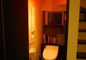 トイレとりあえずの改装6