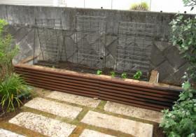玄関アプローチ前の小庭5 菜園スペース2