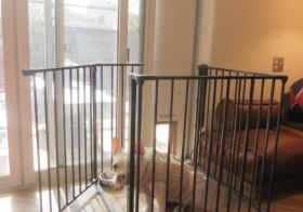 犬ドア作成3と柵